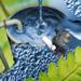 Биологические установки очистки сточных вод